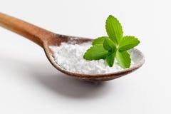 Stevia o hierba dulce Imágenes de archivo libres de regalías