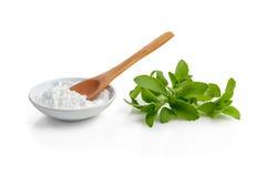 Stevia o hierba dulce Imagenes de archivo