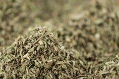 Stevia opuszcza dla use jako tło wizerunek lub jako tekstura (suszący) fotografia royalty free
