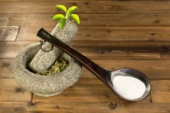 Stevia powder and dried leaves Stock Photo