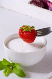 Stevia Powder and strawberry. Natural Sweetener. Stock Photo