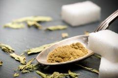 Stevia rebaudiana bertoni powder Stock Photos
