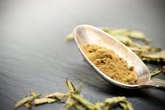 Stevia rebaudiana bertoni powder Stock Image