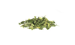 Stevia rebaudiana Stock Photos