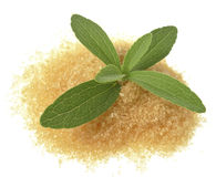 Stevia rebaudiana with a sugar Royalty Free Stock Photos
