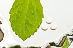 Stevia rebaudiana, Support für Zucker, Tabletten Stockbild