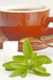 Stevia rebaudiana, support for sugar Royalty Free Stock Photography