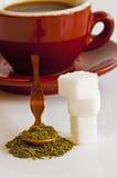 Stevia rebaudiana, support for sugar Royalty Free Stock Photos