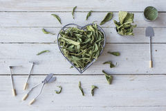 Stevia Royalty Free Stock Image