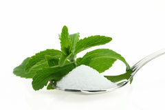 Stevia sugar Royalty Free Stock Photos