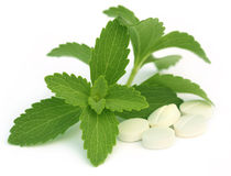 Stevia with tablets Royalty Free Stock Photos