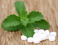 Stevia with tablets Royalty Free Stock Photography