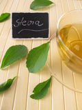 Stevia tea Royalty Free Stock Photo