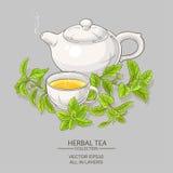 Stevia tea illustration Royalty Free Stock Image