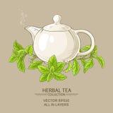 Stevia tea illustration Stock Photos