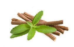 Stevia und Süßholz Lizenzfreies Stockbild