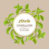 Stevia vector frame Royalty Free Stock Photos