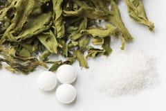 Stevia w trzy formach Fotografia Stock