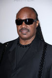 Stevie Wonder Lizenzfreies Stockfoto