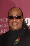 Stevie Wonder arkivfoto