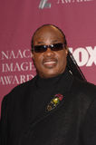 Stevie Wonder,Pop Stars Royalty Free Stock Photo