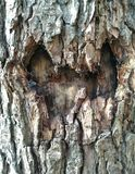 Stevig houten hart stock foto's
