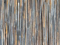 Stevige muur van weer versleten droog riet Royalty-vrije Stock Foto's