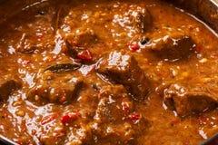 Stew βόειου κρέατος σε ένα τηγάνι Στοκ εικόνα με δικαίωμα ελεύθερης χρήσης