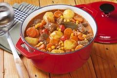 Stew βόειου κρέατος στο κόκκινο δοχείο Στοκ Εικόνες