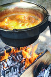 Stew πυρών προσκόπων υπαίθριο μαγείρεμα Στοκ εικόνες με δικαίωμα ελεύθερης χρήσης
