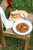 Stew πυρών προσκόπων υπαίθριο μαγείρεμα Στοκ Εικόνα