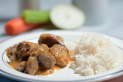 Stew της Τουρκίας με το ρύζι Στοκ εικόνες με δικαίωμα ελεύθερης χρήσης