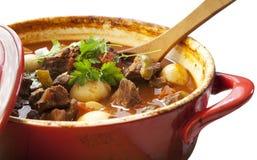 stew говядины Стоковое фото RF