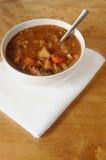 stew говядины стоковая фотография rf