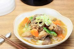 Stew of beef tendon Stock Images