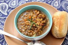 Stew of brown lentils Royalty Free Stock Photo