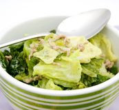 A stew of cabbage Royalty Free Stock Images