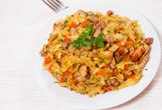 Stew cabbage with meat Royalty Free Stock Images
