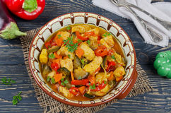 Stew with chicken and vegetables Royalty Free Stock Photo