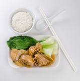 Stew ginger chicken with rice and vegetables Stock Photos