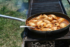 Stew with joints chicken. Traditional cooking from The International Contest of Cooking in the air; stew with joints chicken and spices Stock Photography