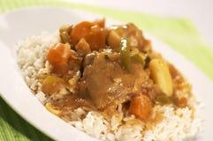 stew kurczaka Zdjęcia Royalty Free