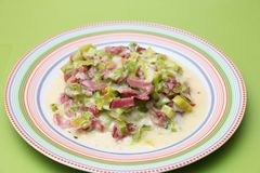 Stew of leek and bacon Stock Images