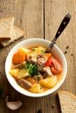 stew med meat och grönsaker arkivfoto