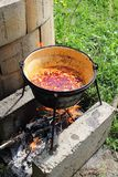 Stew in the pot on the fire. Stock Images