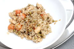 Stew of rice and chicken meat Stock Images