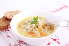Stew of rice and vegetables Stock Photography