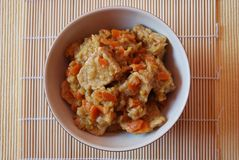 Stew tempeh Stock Images