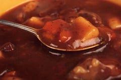 stew zbliżenia wołowiny obraz stock