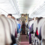 Steward on the airplane. Stock Images